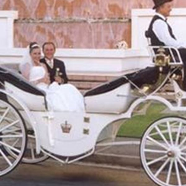 Wedding Cars-Champagne Wedding Carriages