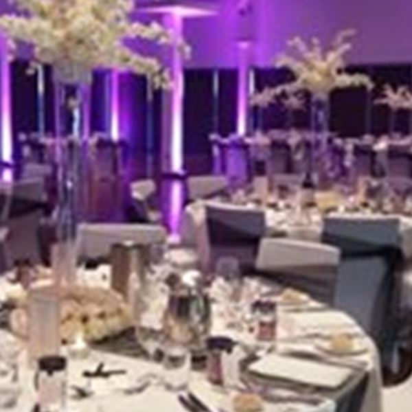 Elegant creations qld wedding decorations brookwater easy weddings wedding decorations elegant creations qld junglespirit