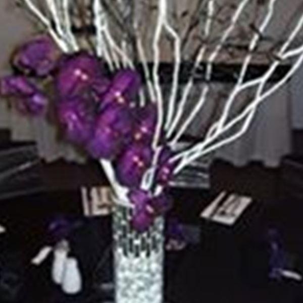 Judys wedding bouquets hire decorations rockhampton easy weddings decorations judys wedding bouquets hire junglespirit Gallery