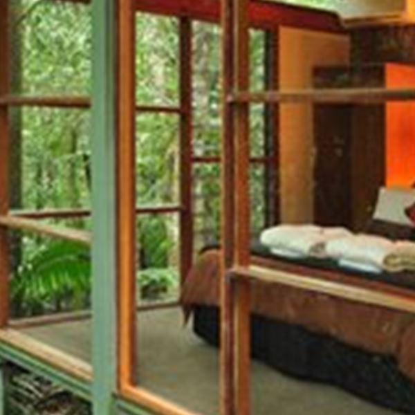 Accommodation-Crystal Creek Rainforest Retreat
