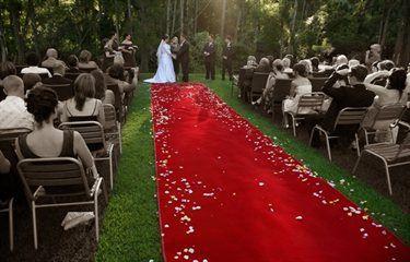 Canungra valley vineyard wedding