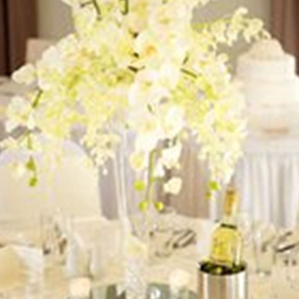 Decorations-Simply Elegant - Wedding and Events
