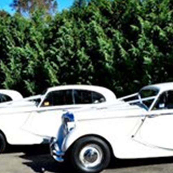 Wedding Cars-Forever Classic Wedding Cars