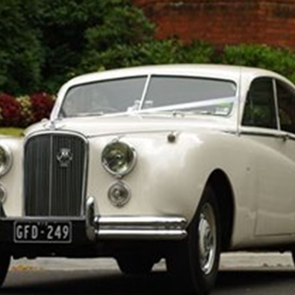 Wedding Cars-White Classic Jags