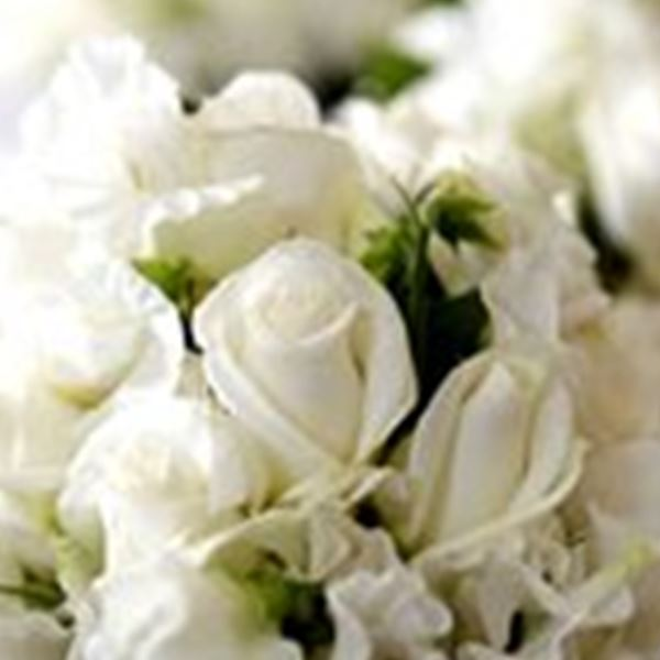 Wedding Flowers-Williams Florist