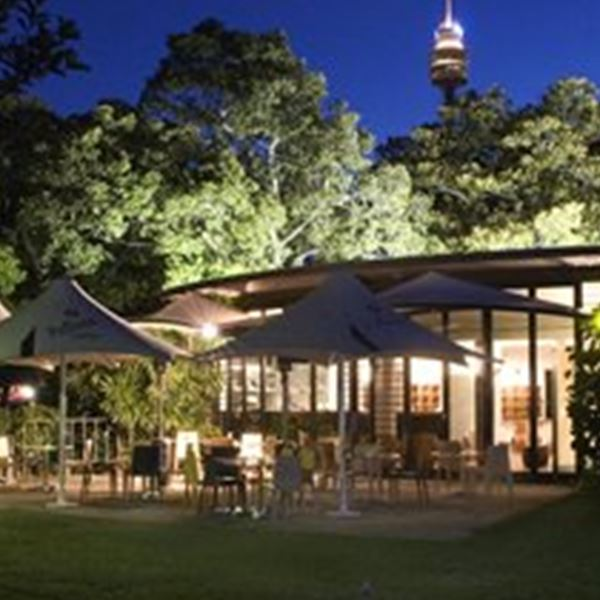 Wedding Venues-The Terrace on the Domain