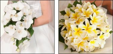wedding bouquets adelaide flowers of adelaide wedding flowers torrensville easy 8491