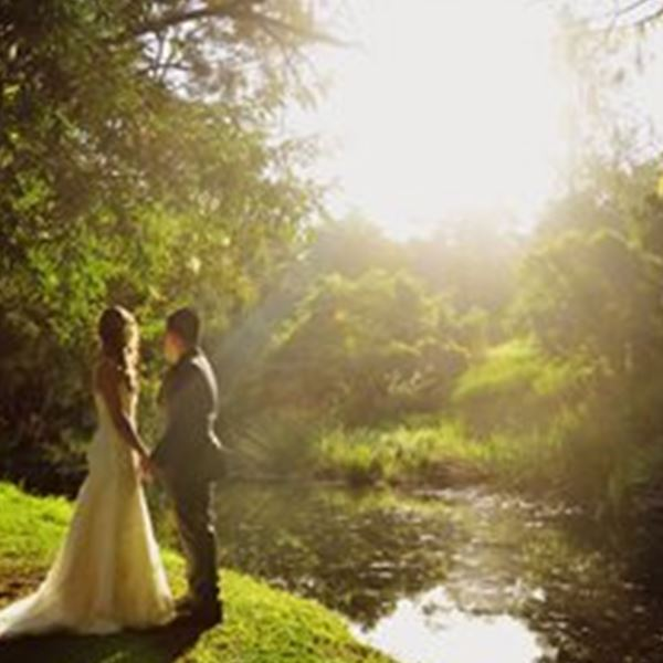 Wedding Venues-Bundaleer Rainforest Gardens